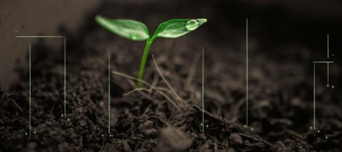 Alternative Futures of the Carbon Underground